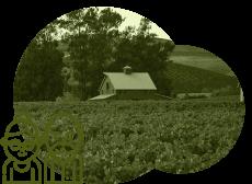 ナパ・ヴァレーにあるワイナリーの95%が家族経営。