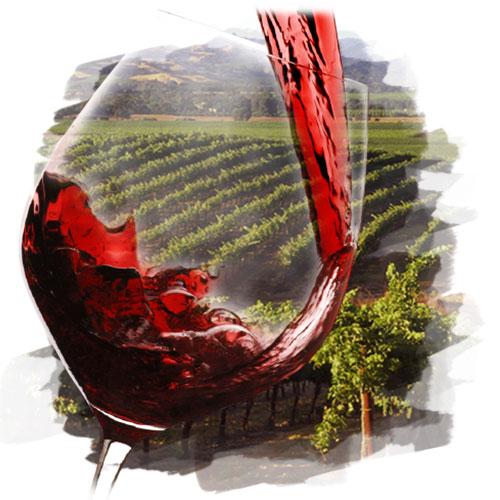 多種多様な気候と土壌、ブドウ品種